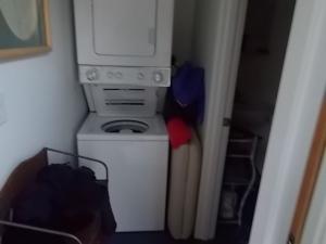 Lissa ADU Laundry
