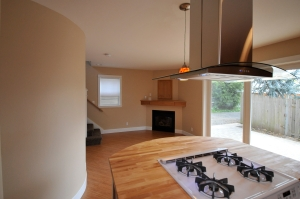 gas range and fireplace in Stephen Williams' ADU