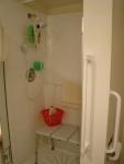 Dalton ADU Accessible Shower