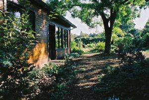 Nelson-Matthews Courtyard