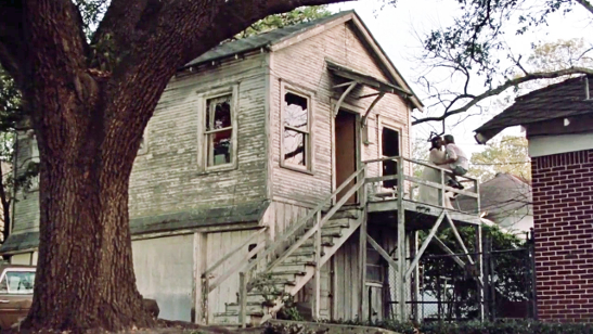 Affordable Apartments Near Montrose Houston