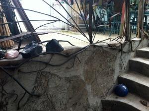Lonstron ADU Steps & Banister