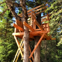 Ak Builders Treehouse 1