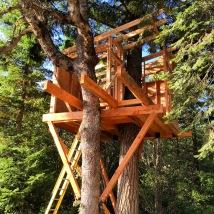 Ak Builders Treehouse 1