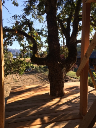 AK Builders Treehouse 2