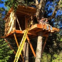 AK Builders Treehouse 4