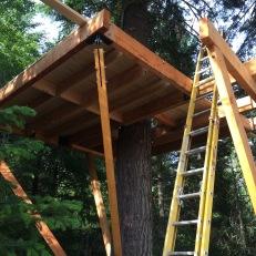 AK Builders Treehouse 5